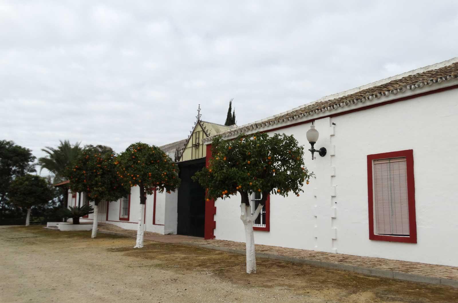 Hacienda El Trobal - entrada<div style='clear:both;width:100%;height:0px;'></div><span class='cat'>Hacienda El Trobal</span><div style='clear:both;width:100%;height:0px;'></div><span class='desc'>Hacienda El Trobal - entrada</span>